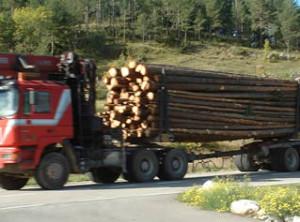 truck-driving-in-alaska